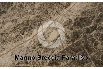Marmo Breccia Paradiso. Stazzema. Toscana. Italia. Sezione lucida