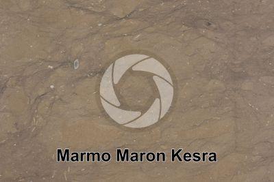 Marmo Maron Kesra. Kesra. Tunisia. Sezione lucida