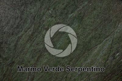 Marmo Verde Serpentino. Valmalenco. Lombardia. Italia. Sezione lucida