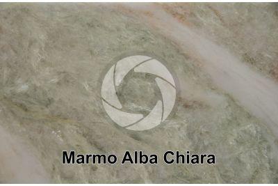 Marmo Alba Chiara. India. Sezione lucida
