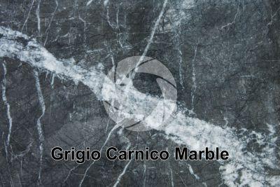Grigio Carnico Marble. Friuli Venezia Giulia. Italy. Polished section
