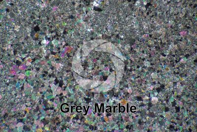 Grey Marble. Thin section in cross polarized light. 32X