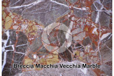 Breccia Macchia Vecchia Marble. Switzerland