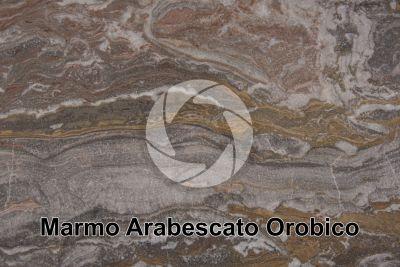Marmo Arabescato Orobico. Bergamo. Lombardia. Italia. Sezione lucida