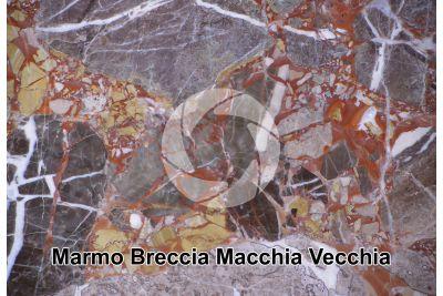 Marmo Breccia Macchia Vecchia. Svizzera