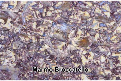 Marmo Broccatello. Spagna