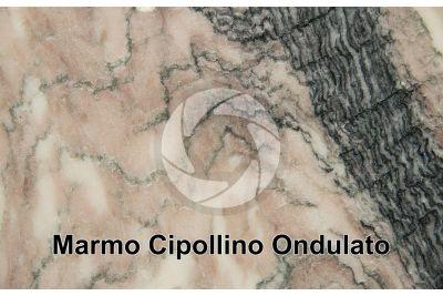 Marmo Cipollino Ondulato. Toscana. Italia. Sezione lucida