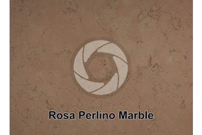 Rosa Perlino Marble. Asiago. Veneto. Italy. Polished section