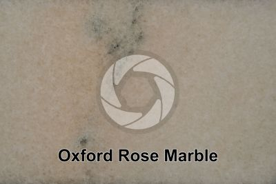 Oxford Rose Marble. Ruschita. Romania. Polished section