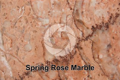 Spring Rose Marble. Iran. Polished section