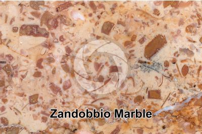 Zandobbio Marble. Lombardy. Italy. Polished section. 2X