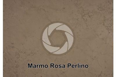 Marmo Rosa Perlino. Asiago. Veneto. Italia. Sezione lucida
