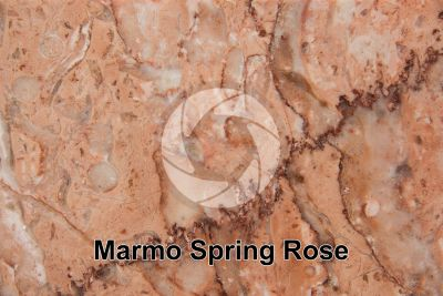 Marmo Spring Rose. Iran. Sezione lucida