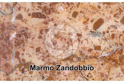 Marmo Zandobbio. Lombardia. Italia. Sezione lucida. 1X