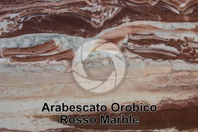 Arabescato Orobico Rosso Marble. Bergamo. Lombardy. Italy. Polished section