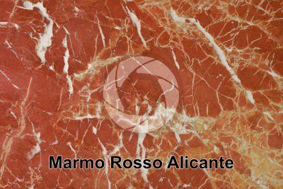 Marmo Rosso Alicante. Valencia. Spagna. Sezione lucida