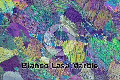 Bianco Lasa Marble. Trentino Alto Adige. Italy. Thin section in cross polarized light with lambda filter. 32X
