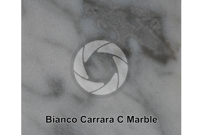 Bianco Carrara C Marble. Tuscany. Italy. Polished section. 1X