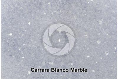 Bianco Carrara Marble. Carrara. Tuscany. Italy. Polished section. 2X