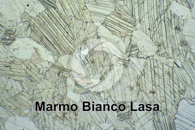 Marmo Bianco Lasa. Trentino Alto Adige. Italia. Sezione sottile in luce polarizzata. 32X