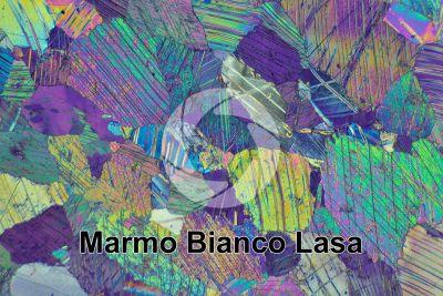 Marmo Bianco Lasa. Trentino Alto Adige. Italia. Sezione sottile in luce polarizzata a Nicol incrociati con filtro lambda. 32X