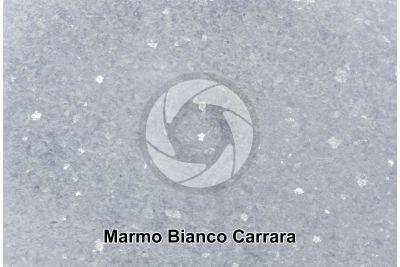 Marmo Bianco Carrara. Carrara. Toscana. Italia. Sezione lucida. 2X
