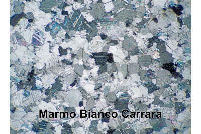 Marmo Bianco Carrara. Carrara. Toscana. Italia. Sezione sottile in luce polarizzata a Nicol incrociati. 32X