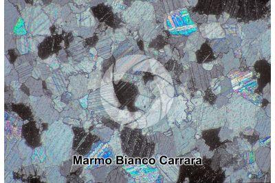 Marmo Bianco Carrara. Carrara. Toscana. Italia. Sezione sottile in luce polarizzata a Nicol incrociati. 64X