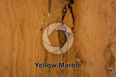 Yellow Marble. India. Polished section