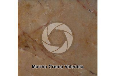 Marmo Crema Valencia. Valencia. Spagna. Sezione lucida. 1X
