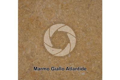 Marmo Giallo Atlantide. Sinai. Egitto. Sezione lucida. 1X