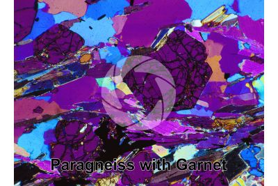 Paragneiss. Sole Valley. Trentino. Italy. Thin section in cross polarized light with lambda filter. 64X