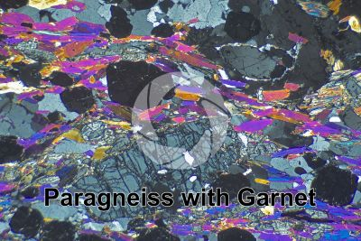 Paragneiss with Garnet. Sole Valley. Trentino Alto Adige. Italy. Thin section in cross polarized light. 32X