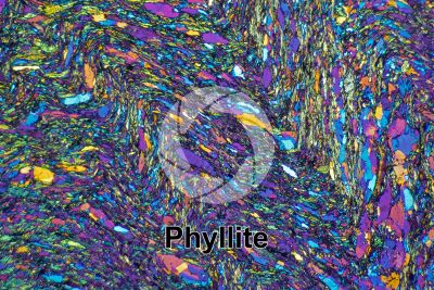 Phyllite. Valdiola. Marche. Italy. Thin section in cross polarized light with lambda filter. 32X