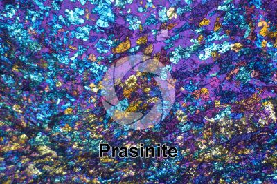 Prasinite. Thin section in cross polarized light with lambda filter. 32X