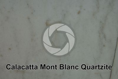 Calacatta Mont Blanc Quartzite. Italy. Polished section