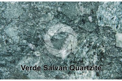 Verde Salvan Quartzite. Salvan. Valais. Switzerland. Polished section