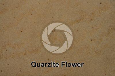 Quarzite Flower. India. Sezione lucida