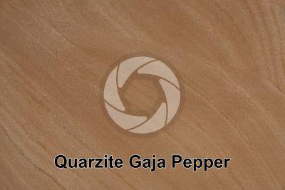 Quarzite Gaja Pepper. India. Sezione lucida