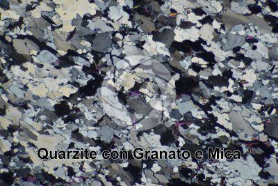 Quarzite con Granato e Mica. Sezione sottile in luce polarizzata a Nicol incrociati. 32X