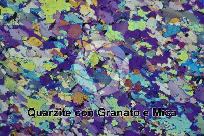 Quarzite con Granato e Mica. Sezione sottile in luce polarizzata a Nicol incrociati con filtro lambda. 32X