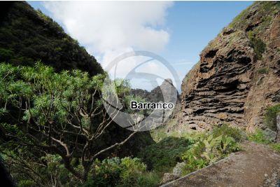 Barranco del Infierno. Tenerife. Isole Canarie. Spagna