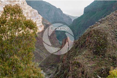 Barranco. Gran Canaria. Isole Canarie. Spagna
