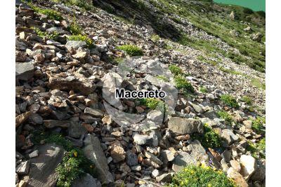 Macereto. Val Seriana. Lombardia. Italia