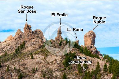 Neck. Roque Nublo. Gran canaria. Isole Canarie. Spagna
