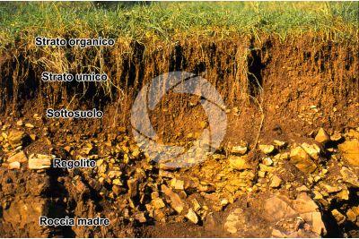 Terreno in sezione