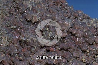 Zolfo nativo con Selenio