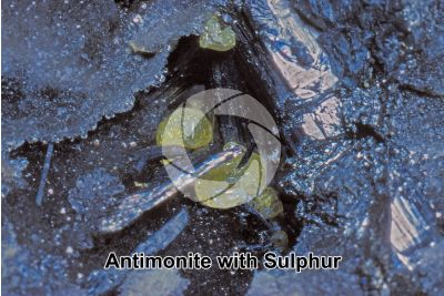Antimonite with Sulphur