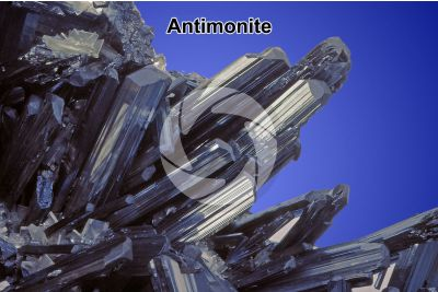 Antimonite