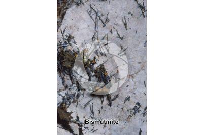Bismutinite